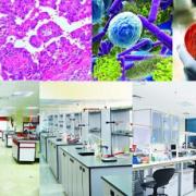 کتاب شیوه های پژوهش در آزمایشگاه های علوم دارویی