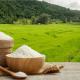 کتاب اثربخشی تحقیقات برنج